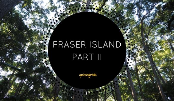 fraser island part 2